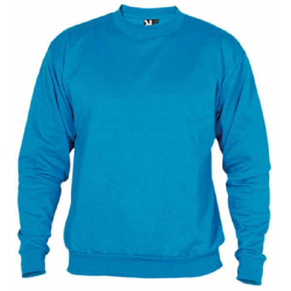 SUDADERA BEBE ROLY CLASICA 20A/80P 280G